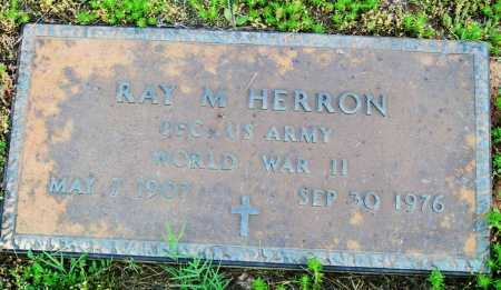 HERRON (VETERAN WWII), RAY M - Logan County, Arkansas | RAY M HERRON (VETERAN WWII) - Arkansas Gravestone Photos