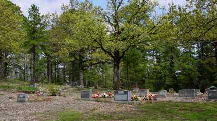 *OVERVIEW,  - Logan County, Arkansas |  *OVERVIEW - Arkansas Gravestone Photos