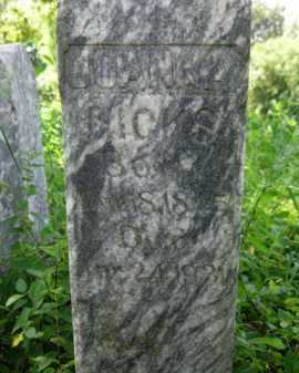 BUTCHER HICKS, JOANNA (CLOSEUP) - Logan County, Arkansas | JOANNA (CLOSEUP) BUTCHER HICKS - Arkansas Gravestone Photos