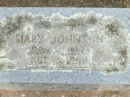 JOHNSON, MARY - Logan County, Arkansas | MARY JOHNSON - Arkansas Gravestone Photos