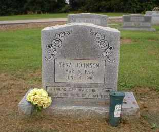 JOHNSON, TENA - Logan County, Arkansas | TENA JOHNSON - Arkansas Gravestone Photos