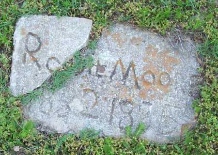 MOORE, ROSIE - Logan County, Arkansas | ROSIE MOORE - Arkansas Gravestone Photos