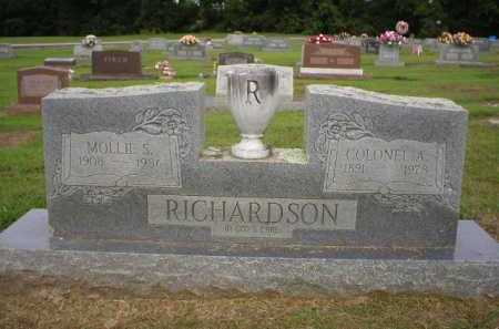 RICHARDSON, MOLLIE S. - Logan County, Arkansas | MOLLIE S. RICHARDSON - Arkansas Gravestone Photos