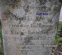 SADLER, ALBERT - Logan County, Arkansas | ALBERT SADLER - Arkansas Gravestone Photos