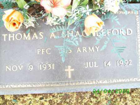 SHACKLEFORD (VETERAN), THOMAS A - Logan County, Arkansas | THOMAS A SHACKLEFORD (VETERAN) - Arkansas Gravestone Photos