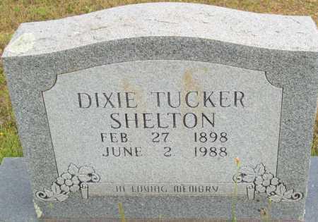 SHELTON, DIXIE TUCKER - Logan County, Arkansas | DIXIE TUCKER SHELTON - Arkansas Gravestone Photos