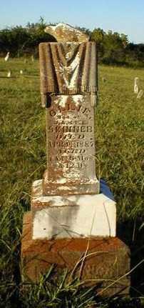 SKINNER, OLLIE - Logan County, Arkansas | OLLIE SKINNER - Arkansas Gravestone Photos