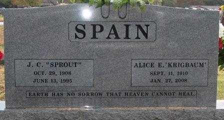 KRIGBAUM SPAIN, ALICE E. - Logan County, Arkansas | ALICE E. KRIGBAUM SPAIN - Arkansas Gravestone Photos