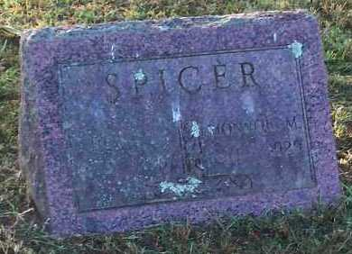 SPICER, DELIA C - Logan County, Arkansas | DELIA C SPICER - Arkansas Gravestone Photos