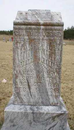 SPRINGER, JAMES MONROE - Logan County, Arkansas | JAMES MONROE SPRINGER - Arkansas Gravestone Photos