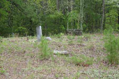 *  EAST VIEW,  - Logan County, Arkansas |  *  EAST VIEW - Arkansas Gravestone Photos