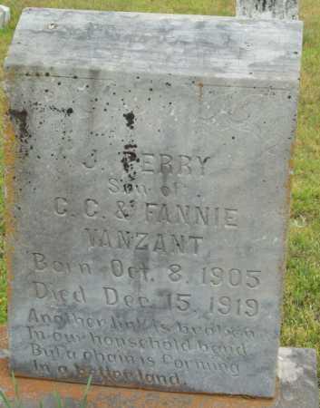 VANZANT, J. PERRY - Logan County, Arkansas | J. PERRY VANZANT - Arkansas Gravestone Photos