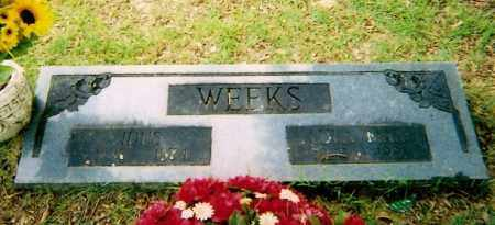 WEEKS, IDUS - Logan County, Arkansas | IDUS WEEKS - Arkansas Gravestone Photos