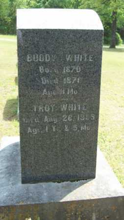 WHITE, BUDDY - Logan County, Arkansas | BUDDY WHITE - Arkansas Gravestone Photos