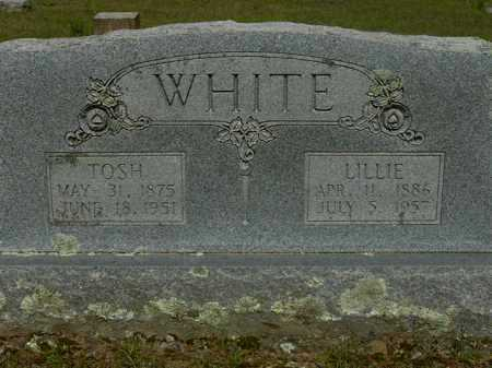 WHITE, LILLIE - Logan County, Arkansas | LILLIE WHITE - Arkansas Gravestone Photos