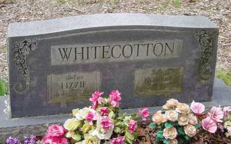 CANADA WHITECOTTON, MAHALA ELIZABETH - Logan County, Arkansas | MAHALA ELIZABETH CANADA WHITECOTTON - Arkansas Gravestone Photos