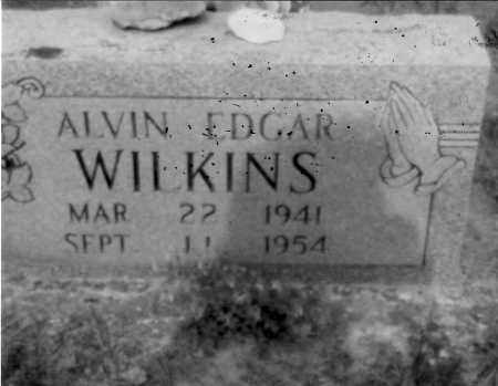 WILKINS, ALVIN - Logan County, Arkansas | ALVIN WILKINS - Arkansas Gravestone Photos