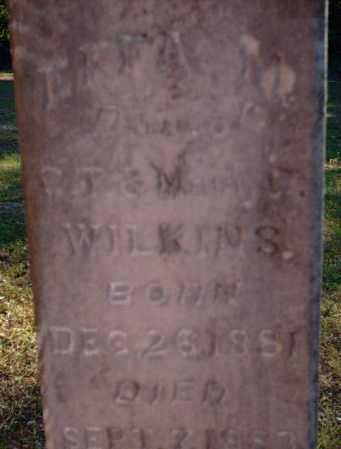 WILKINS, EFFA M - Logan County, Arkansas | EFFA M WILKINS - Arkansas Gravestone Photos