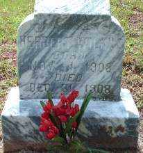 WILKINS, HERBERT - Logan County, Arkansas | HERBERT WILKINS - Arkansas Gravestone Photos