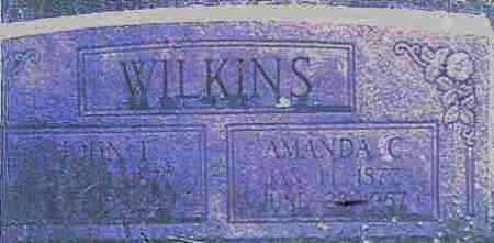WILKINS, JOHN THOMAS - Logan County, Arkansas | JOHN THOMAS WILKINS - Arkansas Gravestone Photos