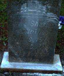 WILKINS, SHERMAN - Logan County, Arkansas | SHERMAN WILKINS - Arkansas Gravestone Photos