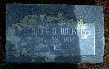 WILKINS, SAMUEL O. - Logan County, Arkansas | SAMUEL O. WILKINS - Arkansas Gravestone Photos