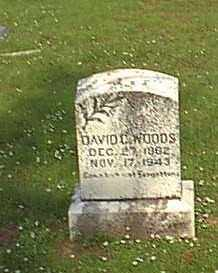 WOODS, DAVID CROCKETT - Logan County, Arkansas | DAVID CROCKETT WOODS - Arkansas Gravestone Photos