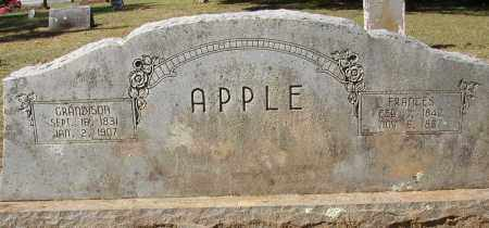 APPLE, GRANDISON - Lonoke County, Arkansas | GRANDISON APPLE - Arkansas Gravestone Photos