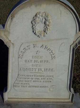 AUSTIN, MARY E - Lonoke County, Arkansas | MARY E AUSTIN - Arkansas Gravestone Photos