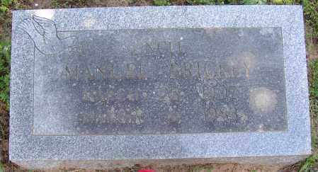 BRICKEY, MANUEL - Lonoke County, Arkansas | MANUEL BRICKEY - Arkansas Gravestone Photos