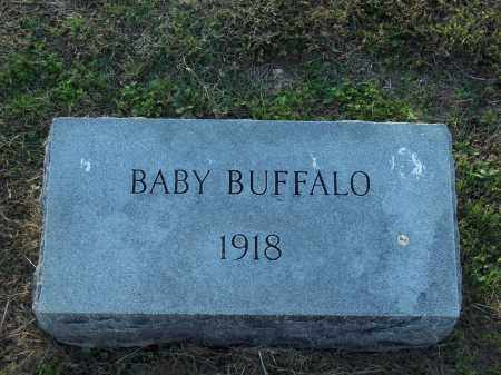 BUFFALO, BABY - Lonoke County, Arkansas | BABY BUFFALO - Arkansas Gravestone Photos