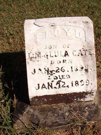 CATE, FLOYD - Lonoke County, Arkansas | FLOYD CATE - Arkansas Gravestone Photos