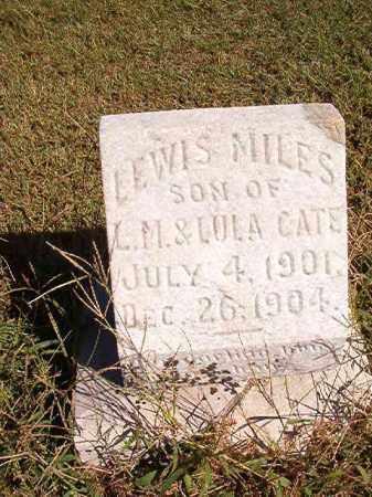 CATE, LEWIS MILES - Lonoke County, Arkansas | LEWIS MILES CATE - Arkansas Gravestone Photos