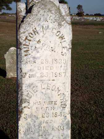 COWLES, ABBIE - Lonoke County, Arkansas | ABBIE COWLES - Arkansas Gravestone Photos