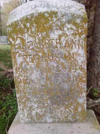 FERGUSON, ELIZABETH ANN - Lonoke County, Arkansas | ELIZABETH ANN FERGUSON - Arkansas Gravestone Photos