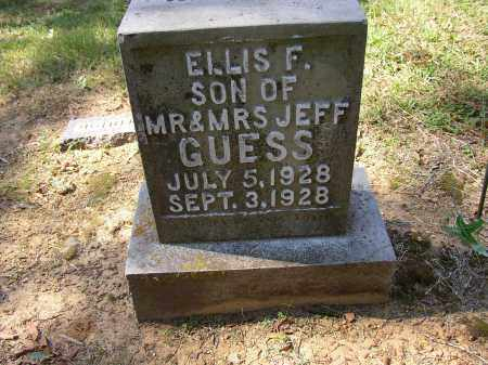 GUESS, ELLIS F. - Lonoke County, Arkansas | ELLIS F. GUESS - Arkansas Gravestone Photos