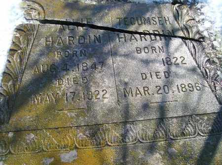 HARDIN, TECUMSEH - Lonoke County, Arkansas | TECUMSEH HARDIN - Arkansas Gravestone Photos