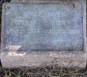 HARVEY, DOYLE F. - Lonoke County, Arkansas | DOYLE F. HARVEY - Arkansas Gravestone Photos