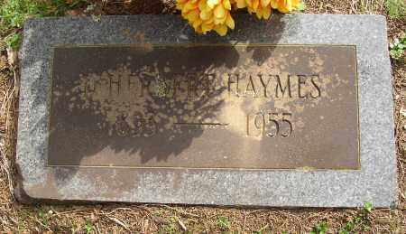 HAYMES, D. HERBERT - Lonoke County, Arkansas | D. HERBERT HAYMES - Arkansas Gravestone Photos