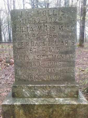 HOLLIS, JULIA ASHIA - Lonoke County, Arkansas | JULIA ASHIA HOLLIS - Arkansas Gravestone Photos