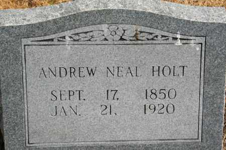 HOLT, ANDREW NEAL - Lonoke County, Arkansas | ANDREW NEAL HOLT - Arkansas Gravestone Photos