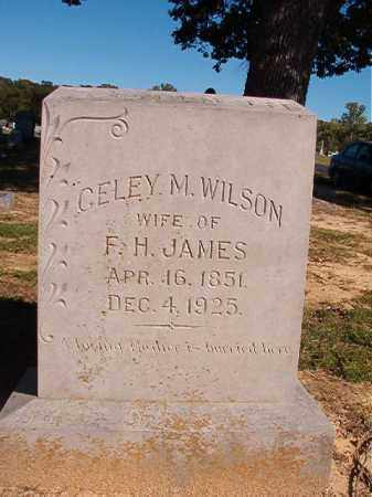 JAMES, CELEY M - Lonoke County, Arkansas | CELEY M JAMES - Arkansas Gravestone Photos