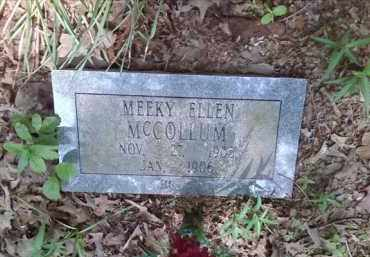 MCCOLLUM, MEEKY ELLEN - Lonoke County, Arkansas | MEEKY ELLEN MCCOLLUM - Arkansas Gravestone Photos
