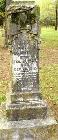 MITCHELL, ALICE - Lonoke County, Arkansas   ALICE MITCHELL - Arkansas Gravestone Photos