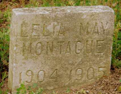 MONTAGUE, LELIA MAY - Lonoke County, Arkansas | LELIA MAY MONTAGUE - Arkansas Gravestone Photos