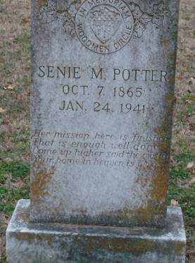 POTTER, SENIE M - Lonoke County, Arkansas | SENIE M POTTER - Arkansas Gravestone Photos