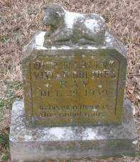 RAY, VIVIAN DELORES - Lonoke County, Arkansas   VIVIAN DELORES RAY - Arkansas Gravestone Photos