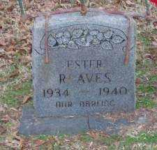 REAVES, ESTER - Lonoke County, Arkansas | ESTER REAVES - Arkansas Gravestone Photos