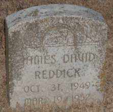 REDDICK, JAMES DAVID - Lonoke County, Arkansas | JAMES DAVID REDDICK - Arkansas Gravestone Photos