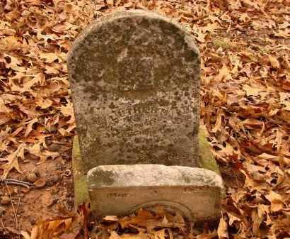ROBINSON, MARTIN LUTHER - Lonoke County, Arkansas | MARTIN LUTHER ROBINSON - Arkansas Gravestone Photos